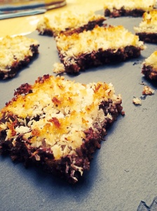 Coconut Chocolate Graham Bars